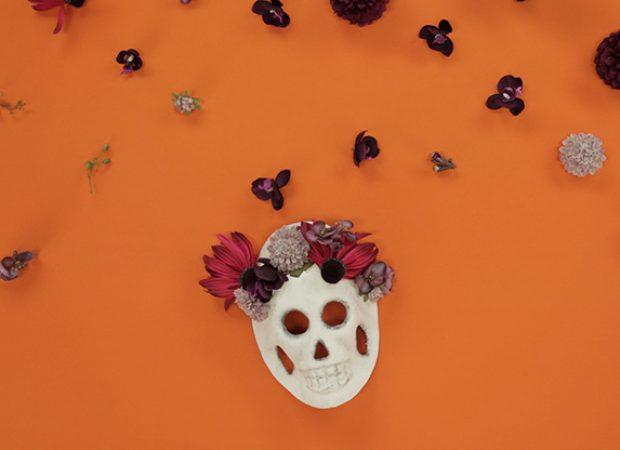 Joann Fabrics – Stop Motion Halloween Skull Masks