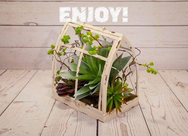 Joann Fabrics – Stop Motion Succulent Garden